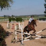 Petits prix: Savon glycériné pour cuir chevaux | Pas cher