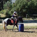 Jeux concours: Selle en cuir chevaux | Avis des clients