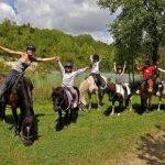 Destockage: Bât de charge pour âne cheval | Notre évaluation