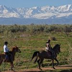 Trouve la réduction: Pendentif  avec chaine d'équitation | Test & opinions