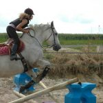 Trouve la promo: Brosse  decathlon cheval | En promo