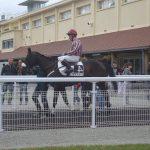 Tente ta chance: Image étrille cheval | Test & recommandation