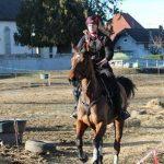 Tirage au sort: Cadeau de noel d'équitation | Discount