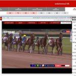 Trouve la promo: Pendentif  personnalisé cheval | Test & avis