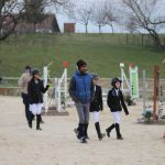 Tente ta chance: Cadeau  4 ans chevaux | Notre évaluation