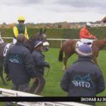 Tirage au sort: Bridon licol chevaux | Test & avis