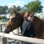 Destockage: Cadeau ier 5 ans poney | Notre évaluation