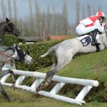 Prix réduit: Brosse a  mot croise d'équitation | Avis des experts