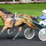Tirage au sort: Drap de lit chevaux | Test & avis