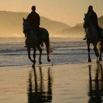 A gagner: Cadeau  adulte cheval | Notre évaluation