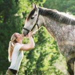 Trouve la promo: Brosse chiendent cheval | Test & avis