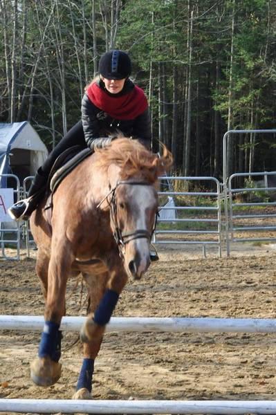 collier  amazon cheval