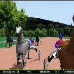 En promo: Bride attelage zylco d'équitation | Avis des forums