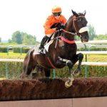 Jeux concours: Puzzle 3d  bois chevaux | Test & avis