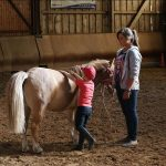 Tirage au sort: Sacoche rando renforcée chevaux | Discount