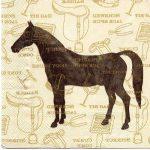 Prix réduit: Bracelet avec d'équitation | Avis & prix