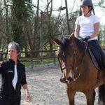 Trouve la promo: Cadeau de chevaux | Avis des utilisateurs