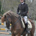Code promo: Bracelet fer a  femme cheval | Avis des experts