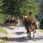 Coupon amz: Bracelet crin  tuto d'équitation | Avis des experts