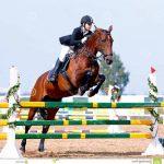 Code AMZ: Pendentif  personnalisé d'équitation | En promo
