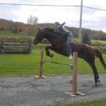 Petits prix: Bottes adolescent chevaux | Discount