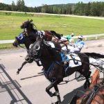 En réduction: Cadeau  8 ans chevaux | Notre évaluation