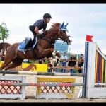 Trouve la promo: Carrousel  reprise d'équitation | En promo