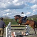 Soldes: Pendentif  cabré ferrari chevaux | Avis des forums