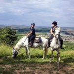 Soldes: Fond ecran iphone cheval | Avis des experts