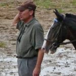 Destockage: Led 3d cheval | Qualité Prix