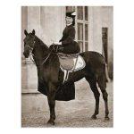 Trouve la réduction: Coussin chevaux | Test complet