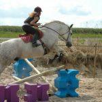 Offre amz: Cadeau theme  fille d'équitation | Notre évaluation