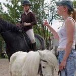 Tente ta chance: Brosse aspirateur cheval | Pas cher