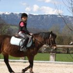 Tente ta chance: Brosse a  synonyme poney | Test & recommandation