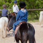 Coupon amz: Seau à eau cheval | Notre évaluation