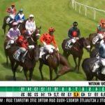 Code AMZ: Carrousel  a 2 cheval | Qualité Prix