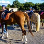 Concours gratuit: Carrousel a vendre cheval | Test & recommandation