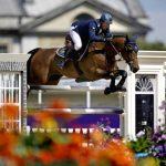 Jeux concours: Brosse a  synonyme d'équitation | Avis des clients