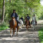 Veste homme équitation | Test & recommandation