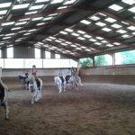 Petits prix: Etrier a poney | Qualité Prix