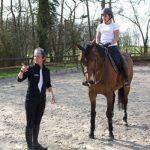 A saisir: Cadeau  fille 13 ans chevaux | Notre évaluation
