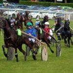 Tente ta chance: 3D chevaux | Test & recommandation
