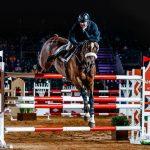Dernières pièces: Veste homme enfant chevaux | Test & recommandation